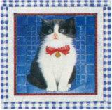 Pussycats II