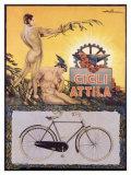 Cicli Attila