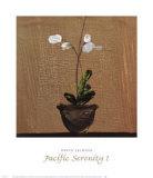 Pacific Serenity I