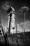 Acropolis Ruins in Rhodes  Greece