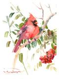 Northern Cardinal And Berries Reproduction d'art par Suren Nersisyan