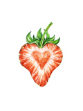 Strawberry Love Water Color Drawing of Strawberry