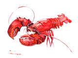 Langouste Reproduction d'art par Suren Nersisyan