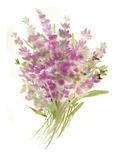 Lavenders2