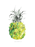 Pineapple_yellow