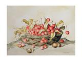 Basket of Cherries  1998