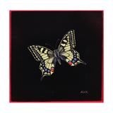Swallowtail Butterfly  1999