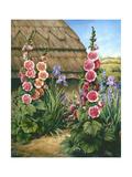 Cottage Garden with Hollyhocks  1995