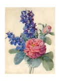 Flowers  Roses and Larkspur