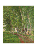 Undergrowth at Moret  1902