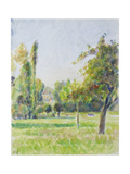 Study of the Orchard of the Artist's House at Eragny-Sur-Epte  C 1890