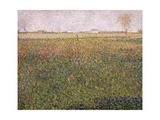 Alfalfa  St Denis  1885