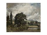 Water Meadows Near Salisbury  19th Century
