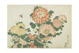 Chrysanthemums and Horsefly  C 1832