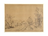 A Main Road Leading to a House Through Trees (Two Bridges and Gate Accesses to the Dijk) (Pen and I