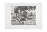 The Poplars  1893-94