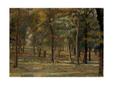 Richmond Park  1914