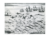 Seascape from 'India Orientalis'  1598