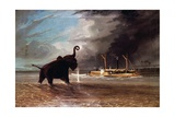 Elephant in Shallow Waters of Shire River  1859