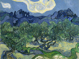 The Olive Trees  1889