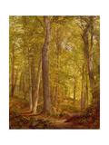 June Woods  Pennsylvania  1864
