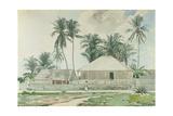 Cabins  Nassau  1885