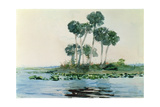 St John's River  Florida  1890