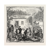 Hops and Hop Pickers  in a Kentish Hop Garden  Kent  England  the Temporary Home  1876  Uk