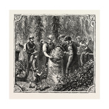 Hops and Hop Pickers  in a Kentish Hop Garden  Kent  England  Measuring the Hops  1876  Uk