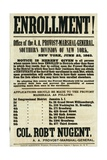 Recruitment Poster for the Southern Division of New York  23rd June 1863