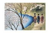 Rear View of Three Girls Walking on a Trail at Lakeside  Arashiyama  Kyoto Prefecture  Japan