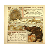 Porcupine Snake and Company the Bear and the Bees