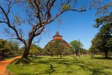 View of Jetavan the Oldest Dagoba in Anuradhapura  Sri Lanka