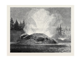 The Grotto Geyser Montana North America 1873