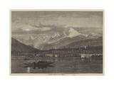 Shooting Grebe on Lake Geneva