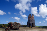Drax Hall Sugar Mill  Barbados