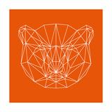 Orange Bear Polygon