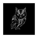 Owl Polygon