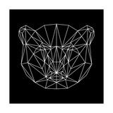 Bear Polygon