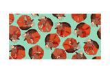 Curled Fox Polka Mint Reproduction d'art par Sharon Turner