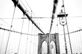 Cables Suspended from the Brooklyn Bridge