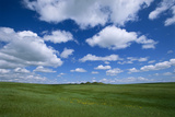 Clouds Hoover over a Bright Green Landscape in the High Plains
