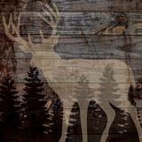 Cerf en forêt Reproduction d'art par Piper Ballantyne