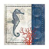 Coastal Blue Seahorse