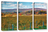 Vineyard In Autumn  3 Piece Gallery-Wrapped Canvas Set