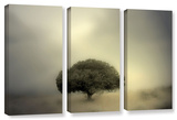 Room To Grow  3 Piece Gallery-Wrapped Canvas Set