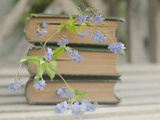 Forget Me Not Bookmarks