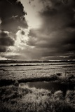 Blakeney Marshes on the Norfolk Coastline