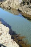 Pond Created in Between Rocks