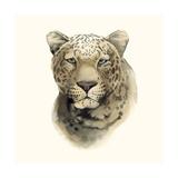 Safari Cat I